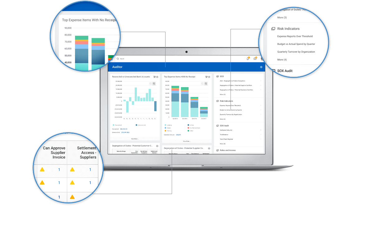 Accounting Audit and Internal Controls Software | Workday