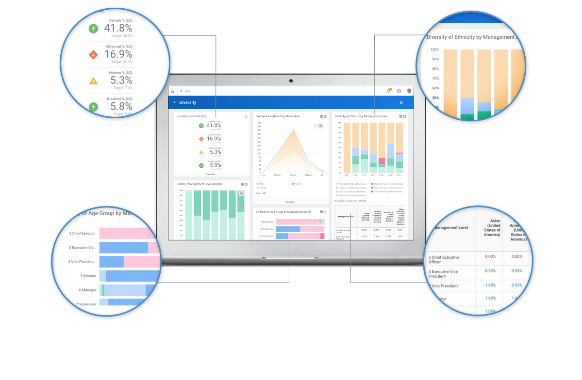 Hcm Reporting And Analytics Workday
