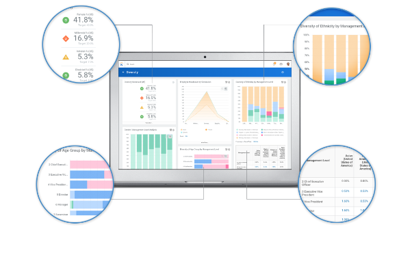 HCM Reporting and Analytics | Workday